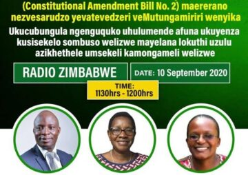 "An Analysis of the provisions on the ""Running Mates"" in the Constitutional Amendment Bill No.2"
